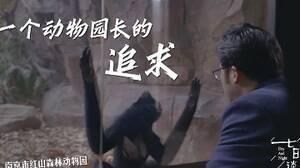 七日談|沈志軍:一個有點理想的動物園長