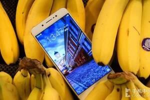近期上市国产手机盘点:别等iPhone7了!
