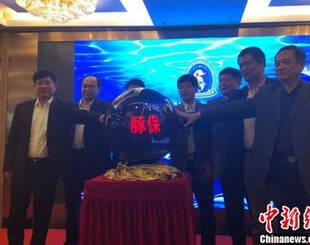 中华白海豚面临三大严峻威胁,农业部启动保护行动九年计划