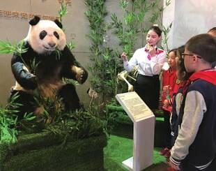 """全球首只塑化大熊猫成都亮相,新妮儿""""亲身说教"""""""