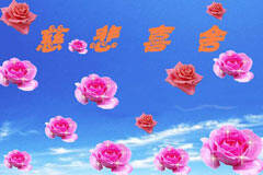 2016年11月29日 - 情系莲花 - nmglz2032的博客