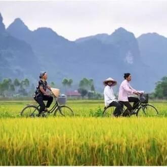 传统互助合作机制被打破,农村社会组织建设令人期待
