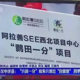 """阿拉善SEE西北项目中心启动""""鹮田一分""""项目"""