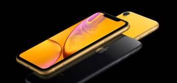 iPhoneXR大规模量产 将占新iPhone订单一半