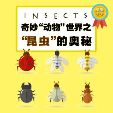 昆虫的奥秘-小朋友大百科