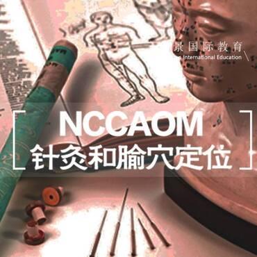 宏景NCCAOM 美国中医 Acupuncture 针灸课程