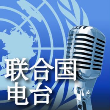 联合国电台专题报道