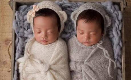 张雨绮的双胞胎是为其幸福加码