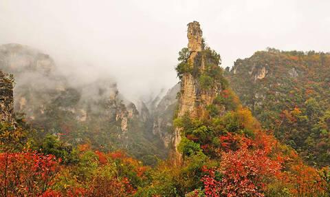 早餐后可先游览九路寨文化生态度假区,乘景交车进入景区,游览楚王峰