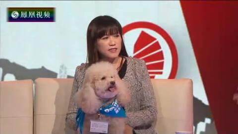 港人自讲 陆茵玲:狗狗一岁开始才可以做狗医生