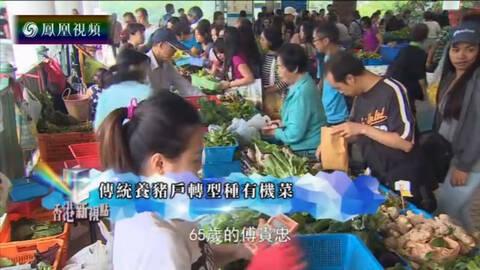 香港新视点 传统养猪户转型种有机菜
