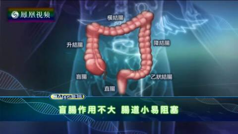 医APPS最强 盲肠炎