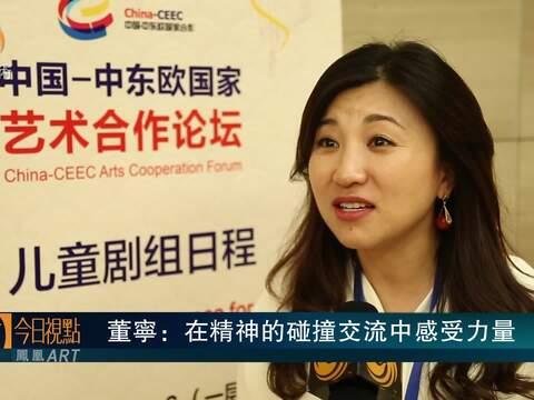 中国-中东欧国家艺术合作论坛-董宁
