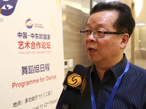 中国-中东欧国家艺术合作论坛-冯双白