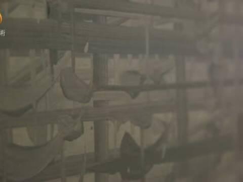 杨黎明:用抽象绘画探索无形的世界