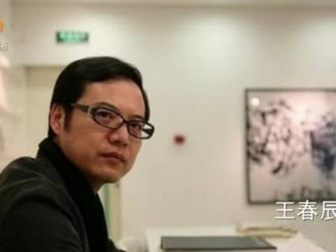 王春辰:美育存滞后 创新是个人选择
