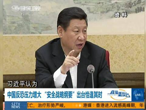 中国反恐压力增大安全战略纲要出台恰逢其时
