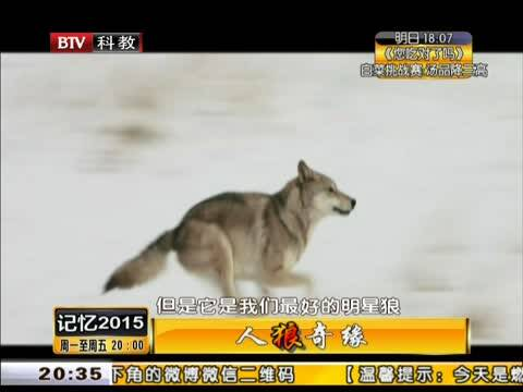 大少 群狼吃掉小白兔 四狼争妻 小白兔的三只狼夫 一个女佣四个大少