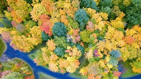 北密归来不看秋 原来北美的绚丽秋景藏在这里