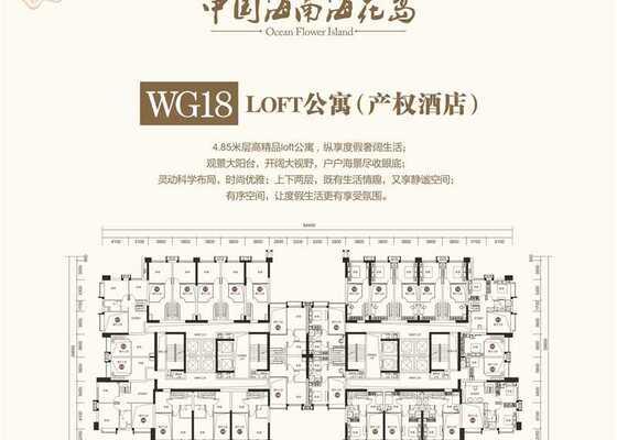 产权酒店(loft公寓)WG18
