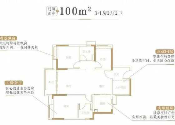 100平2+1房户型图