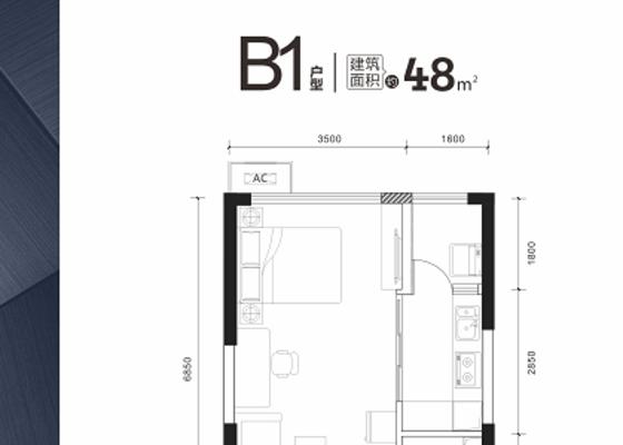 48㎡ B1户型