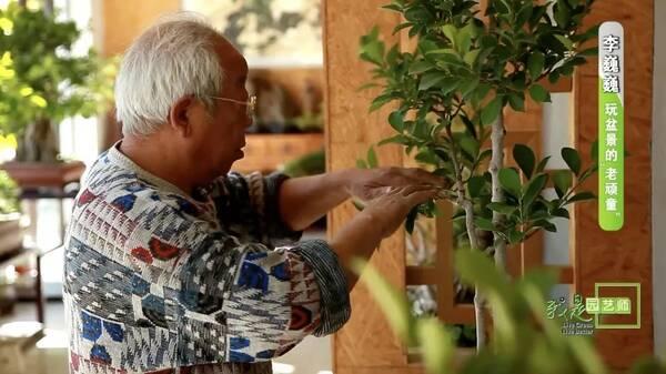 我是园艺师 | 李巍巍:左手盆景,右手画笔图片
