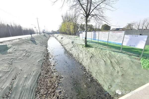恩平大松岭道路规划图