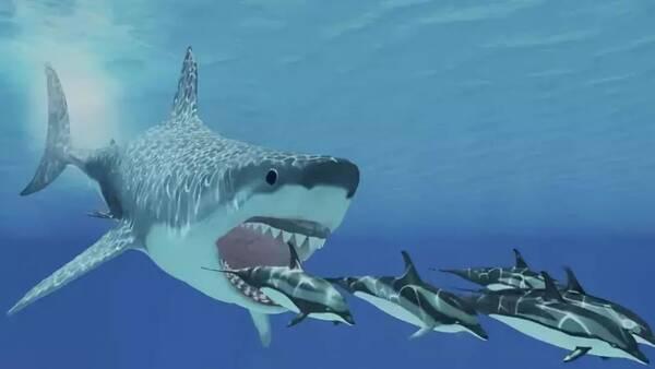 也就是哺乳动物时代 电影里的巨齿鲨设定是23米 相当于最大蓝鲸的三分