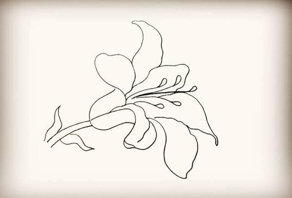 【简笔画】宁陕县图书馆教你画——百合花