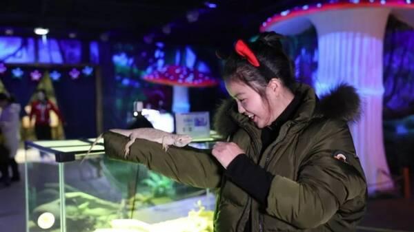 是  綦江人在  重庆渝中区开的动物园 大耳朵口袋 动物园 地址:重庆