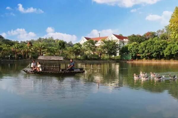 到永湖亚维浓生态园亲子游 到沙田金桔自然保护区 润杨·溪谷吸负离子