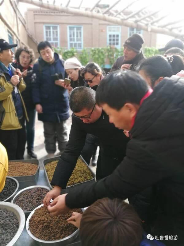 青岛一天津一克拉玛依航线开通,借力邀请青岛30家旅行社来吐进行冬