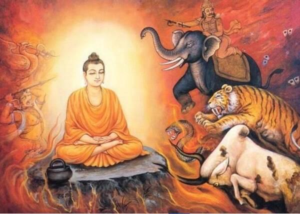 佛教卡通:佛陀的一生 第1集 动漫视频 搜狐视频图片
