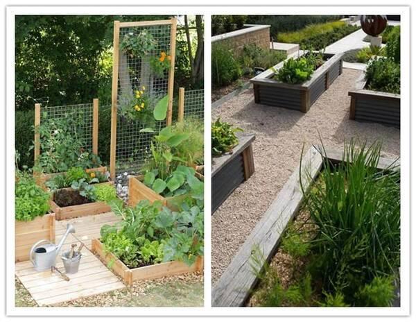 庭院花园菜地设计/春晓庭院sell图片