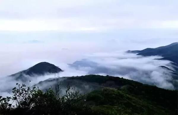 活动时间:2018年12月1日—2019年1月31日 金塘仙人山  其它免费景区