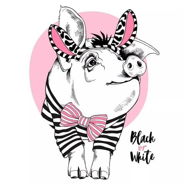 憨态可掬的猪可以休闲潮酷,也可以卡通可爱,不同形式和表现方式,给图片