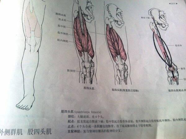 脑瘫蕾波推顺按摩之点压腱器官