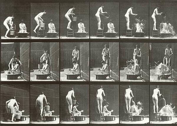 1870年这位摄影师就已经能捕捉动物的运动轨迹