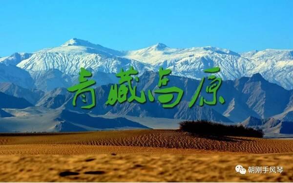 王迟手风琴独奏《青藏高原》视频欣赏