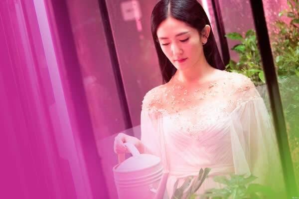 谢娜开的网店_继她2010年开的网店倒闭之后,最近谢娜又创立了一个新时尚品牌.