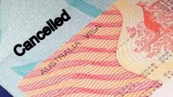 一年六万人签证!被澳大利亚移民局取消,每天164人签证变废纸!