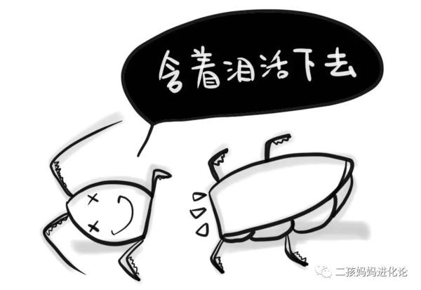 自从当了妈,我过上了蟑螂般的日子图片