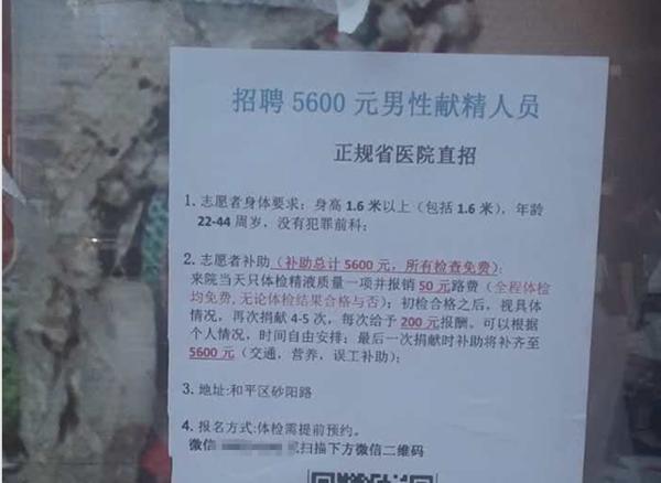 暗访辽宁街边捐精小招贴 一次给5600元营养费