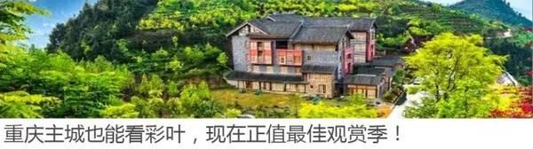 万灵古镇 | 东溪古镇 | 松溉古镇 | 中山古镇 —人气美食— 深夜