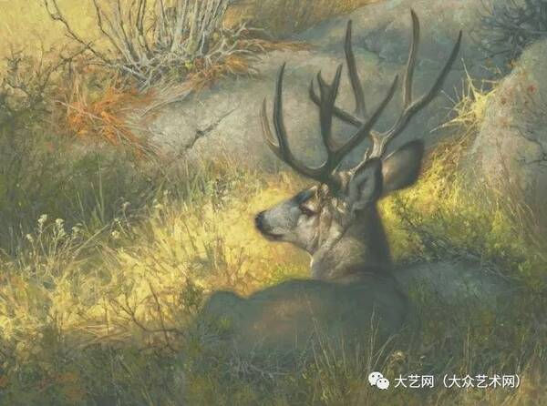 用颜料来雕塑生命 —— 美国写实主义画家 greg beecham 野生动物主题