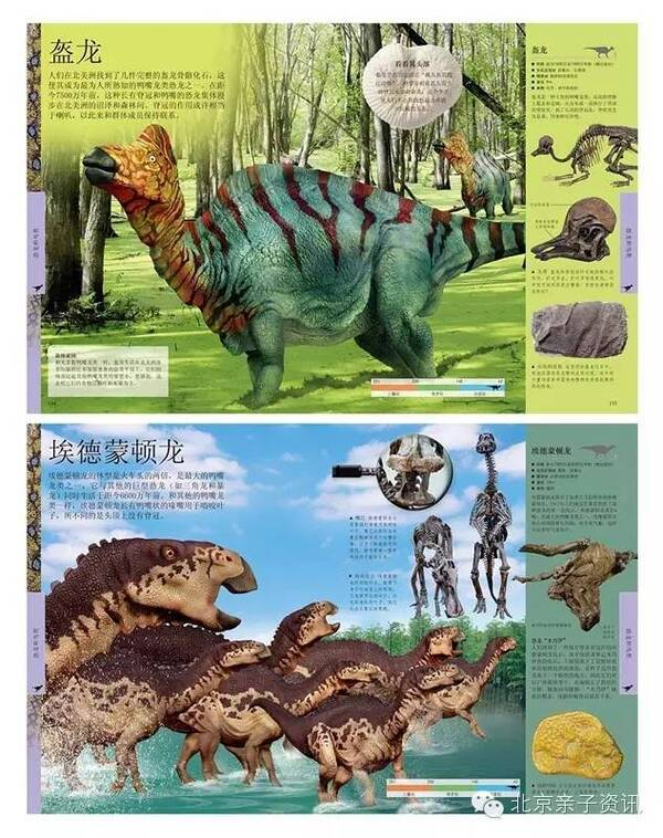 判定它们的行为,最终完成了这本《dk儿童恐龙百科全书》.图片