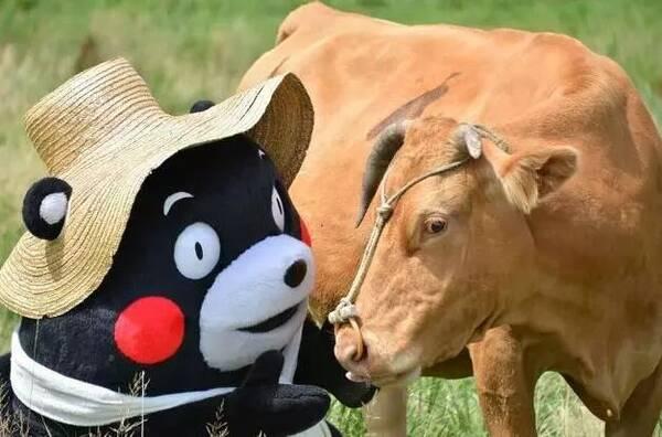东京奥运会吉祥物亮相,网友吐槽发际线.图片
