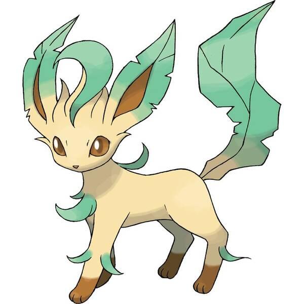1,叶伊布是草属性神奇宝贝,具有猫和狐狸的外貌特征.