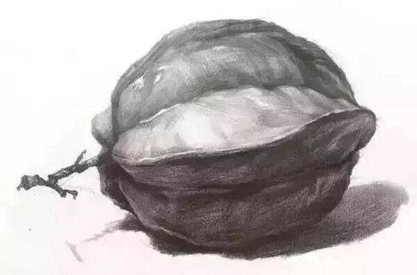 陶罐水果组合结构素描步骤图
